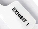 Individual Numeric Exhibit Tabs